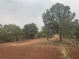 Show Low Pines Unit 10 Lot 296 - Photo 25