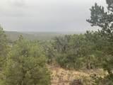 Show Low Pines Unit 10 Lot 296 - Photo 27