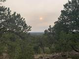 Show Low Pines Unit 10 Lot 296 - Photo 32