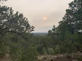 Show Low Pines Unit 10 Lot 296 - Photo 39