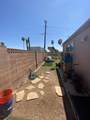 10807 Palm Tree Drive - Photo 1