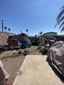 10807 Palm Tree Drive - Photo 13