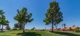 1803 Buena Vista Drive - Photo 17