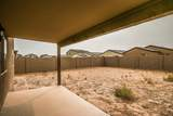 13125 Desert Lily Lane - Photo 29