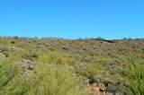 14433 Vista Del Monte - Photo 31