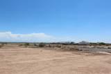6786 Palomino Way - Photo 7