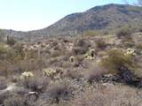 14247 Lone Wolf Trail - Photo 12