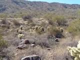 14247 Lone Wolf Trail - Photo 13