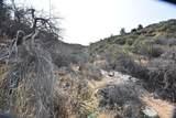 442 Acres Cowboy Hat Road - Photo 10