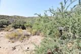 442 Acres Cowboy Hat Road - Photo 5
