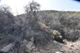 442 Acres Cowboy Hat Road - Photo 8