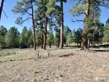 2096 Pine Canyon Drive - Photo 7