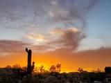 10618 Morning Star Drive - Photo 58