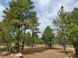 2459 Roundup Lane - Photo 2