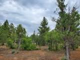 2459 Roundup Lane - Photo 3