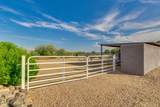 3880 Pinnacle Vista Drive - Photo 49