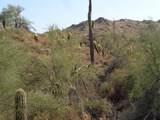 14995 Zapata Drive - Photo 4