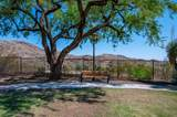 2427 Desert Willow Drive - Photo 49