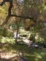 430 Bonito Ranch Loop - Photo 13