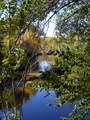 430 Bonito Ranch Loop - Photo 15