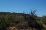 48855 Fig Springs Road - Photo 2