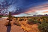 11699 Quartz Rock Road - Photo 44