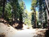 1500 Forest Service 12.488 Road - Photo 35
