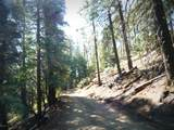 1500 Forest Service 12.488 Road - Photo 36