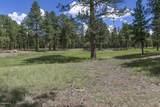 911 Torrey Pines Drive - Photo 1