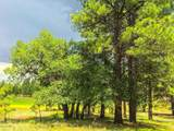 911 Torrey Pines Drive - Photo 11