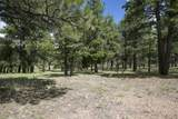 911 Torrey Pines Drive - Photo 9