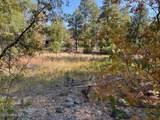 1036 Apache Lane - Photo 4