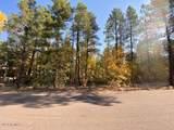 1036 Apache Lane - Photo 8