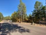 1036 Apache Lane - Photo 9