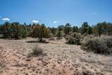 99XX Cougar Canyon-Lot B2a Road - Photo 21