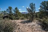 99XX Cougar Canyon-Lot B2a Road - Photo 22