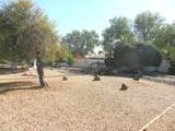13507 Spring Meadow Drive - Photo 31
