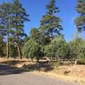 5658 Bald Eagle Way Way - Photo 1