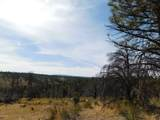 660 Eagle View Drive Drive - Photo 11
