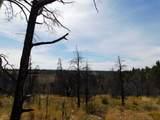 660 Eagle View Drive Drive - Photo 8
