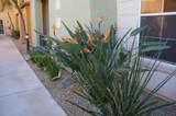 14575 Mountain View Boulevard - Photo 62