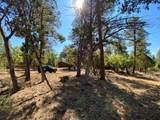 2908 Apache Drive - Photo 3
