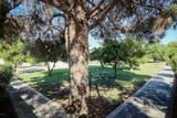 8207 Cactus Road - Photo 43