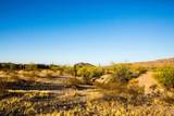 9525 San Marcos Drive - Photo 6
