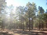 6663 Mogollon Trail - Photo 12