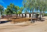 4125 Pinnacle Vista Drive - Photo 3