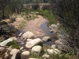 4019 Willows Ranch Road - Photo 40