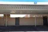 601 Palo Verde Drive - Photo 40