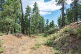 4700 Copper Basin (8 Acres) Road - Photo 13