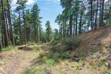 4700 Copper Basin (8 Acres) Road - Photo 14